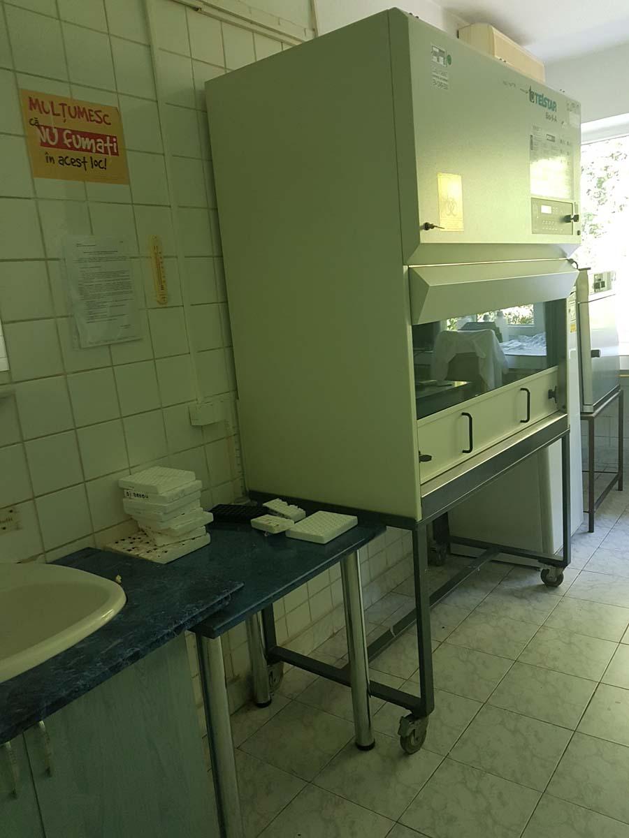 Laborator DSVSA Caras 6